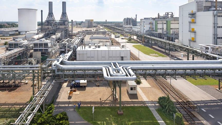 BASF Schwarzheide