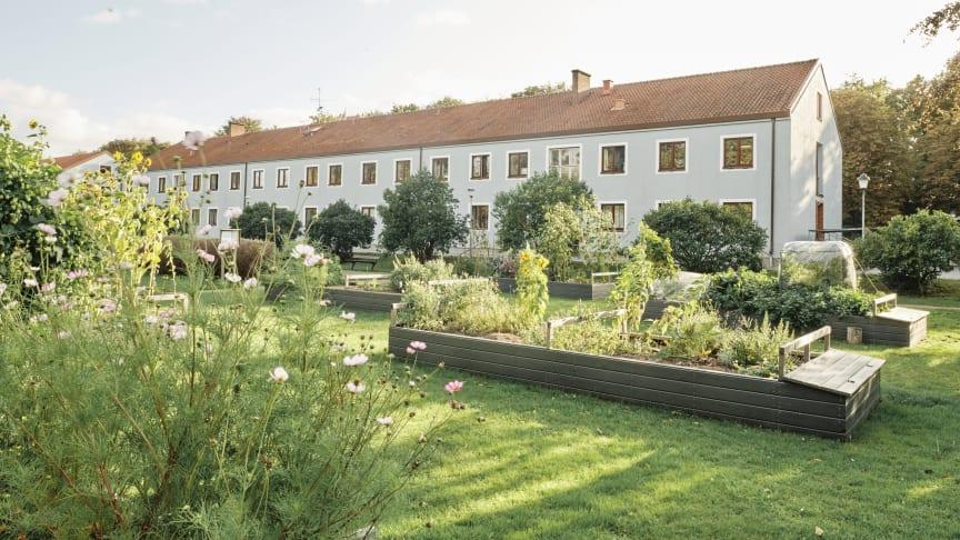 Hållbarhet, delning och odling är nyckelord när drygt 1 200 bostäder ska byggas i Sege Park.