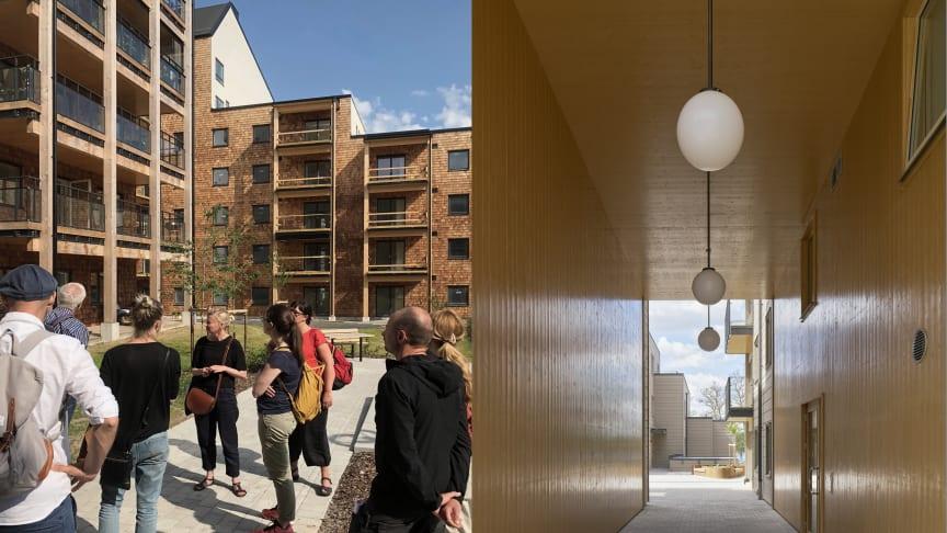 Två av Arkitektbolagets projekt, fr v Vallen och Strandsnäckan, är nominerade till Växjö kommuns nya Träbyggnadspris.