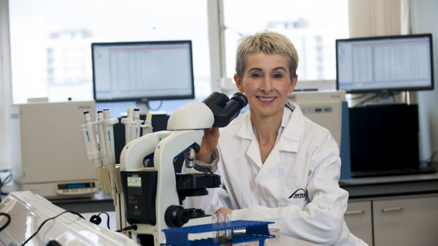 New Executive Dean for Health and Life Sciences at Northumbria