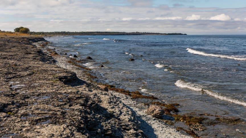 Havs- och vattenmyndigheten, HaV, föreslår nu en rad åtgärder för att få en bättre havsmiljö i Östersjön och Nordsjön.