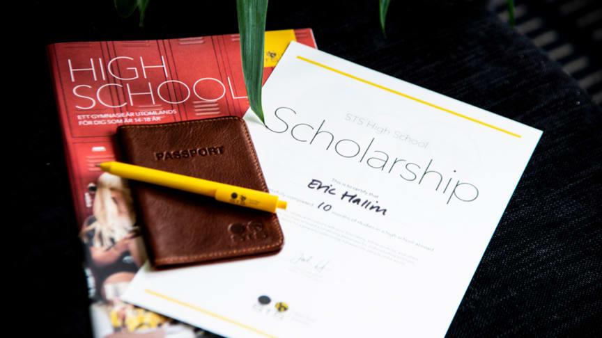 STS High School Scholarship