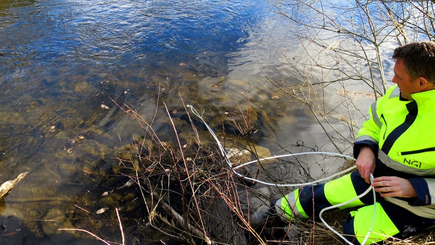 During late autumn 2017, NGI will issue a report to the NEA establishing the whereabouts of fluorinated pollutants in Tyrifjorden.