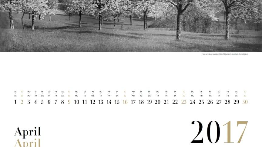 Das erste Goetheanum: Motiv des Kalenderblatts April 2017 (Foto von Gertrud von Heydebrand-Osthoff)