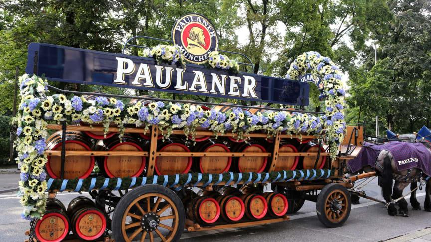 Paulaner Braumeister und Hefeumzug