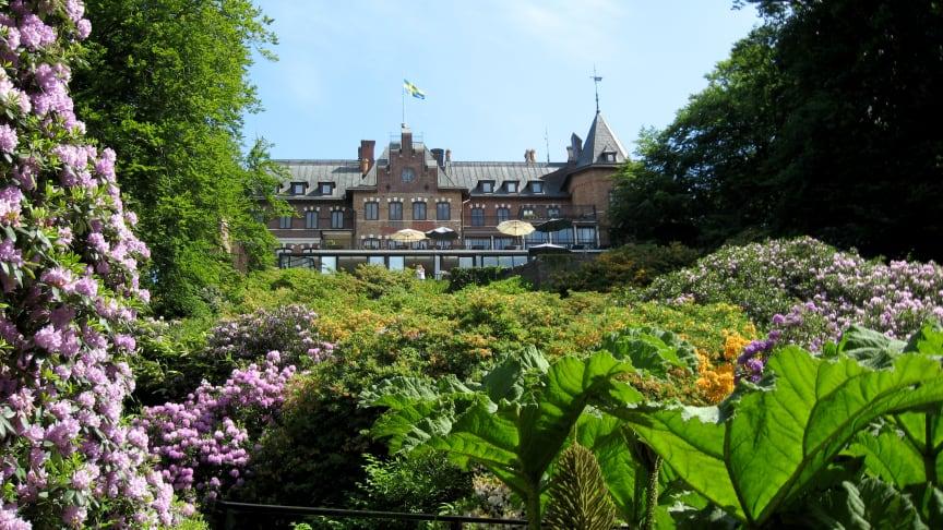 Buntes Erwachen: Mit dem Miniurlaub-Ticket von Scandlines über Ostern und Pfingsten Skandinavien entdecken