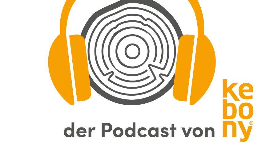 """Im Podcast äußern sich Experten zum Thema """"Designen und Arbeiten mit Holz."""""""