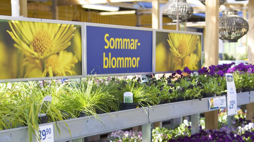 Blomsterlandet öppnar ny butik i Haninge