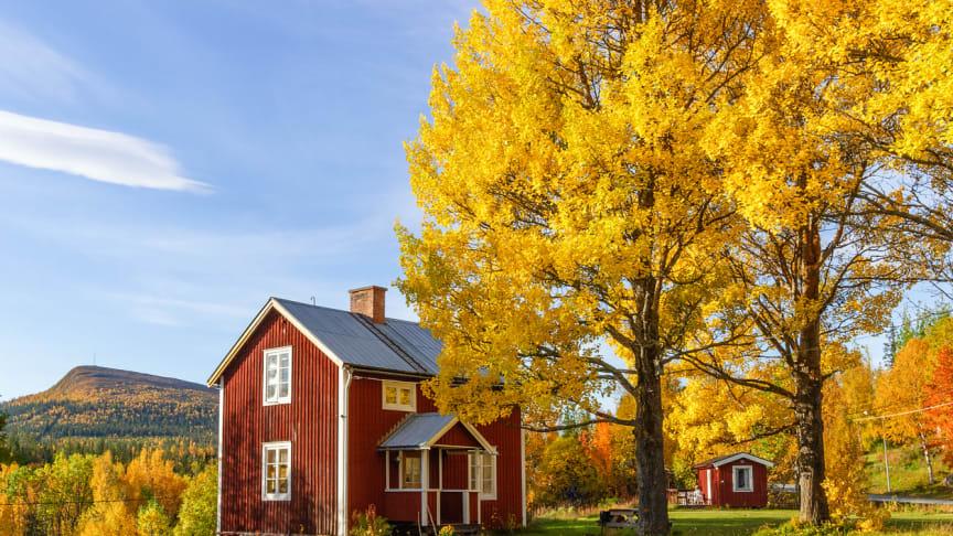 Köpa stuga på hösten