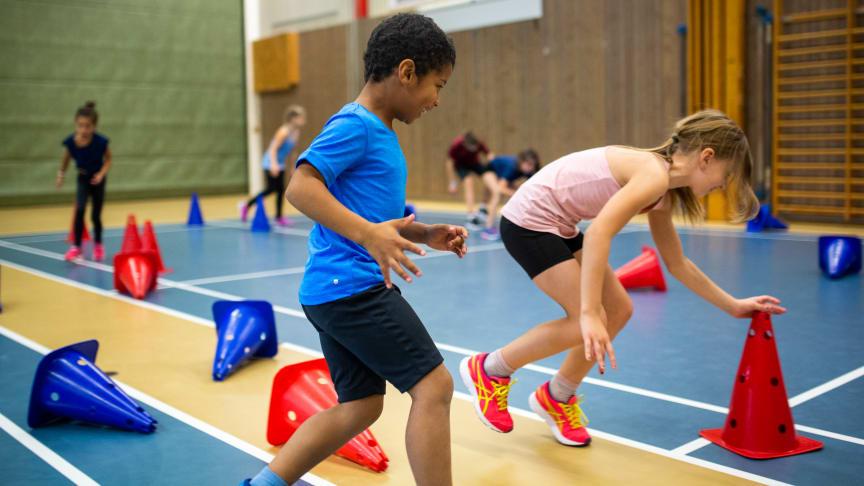 Sveriges fem största förbund för inomhusidrott inleder samarbete med White arkitekter för framtidens idrottshall