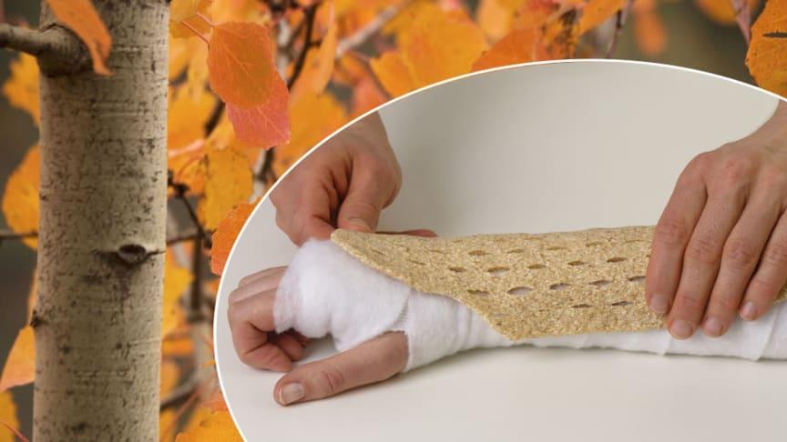 Varannan svensk kvinna och var fjärde man kommer någon gång i livet att bryta ett ben i kroppen till följd av osteoporos.