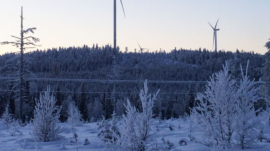 Lapplands Elnät och ONE Nordic får order i hundramiljonersklassen vid bygget av vindkraftparken i Lehtirova.