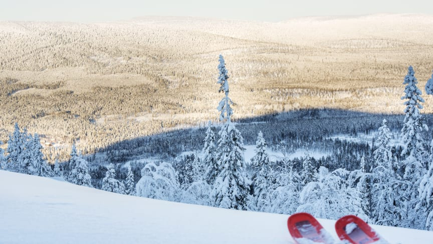 Ihållande minusgrader och regelbundet snöfall som fortsatt även efter jul- och nyårshelgerna har lagt en stabil grund både i och utanför pisterna.