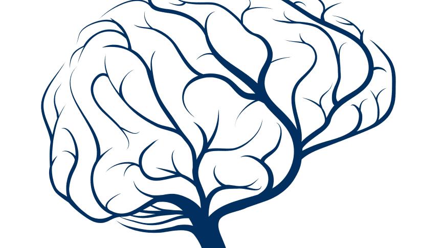Pressinbjudan: Nytt hjärnforskningscenter på Stockholm universitet