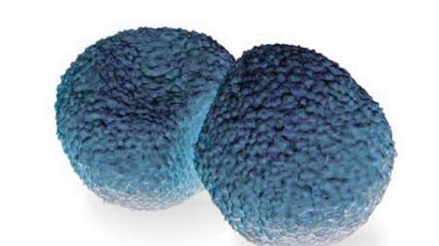 Pneumokocker är den vanligaste orsaken till lunginflammation och orsakar även andra allvarliga sjukdomar som hjärnhinneinflammation (meningit) och blodförgiftning (sepsis) men även mindre svåra sjukdomar som öroninflammation och bihåleinflammation.