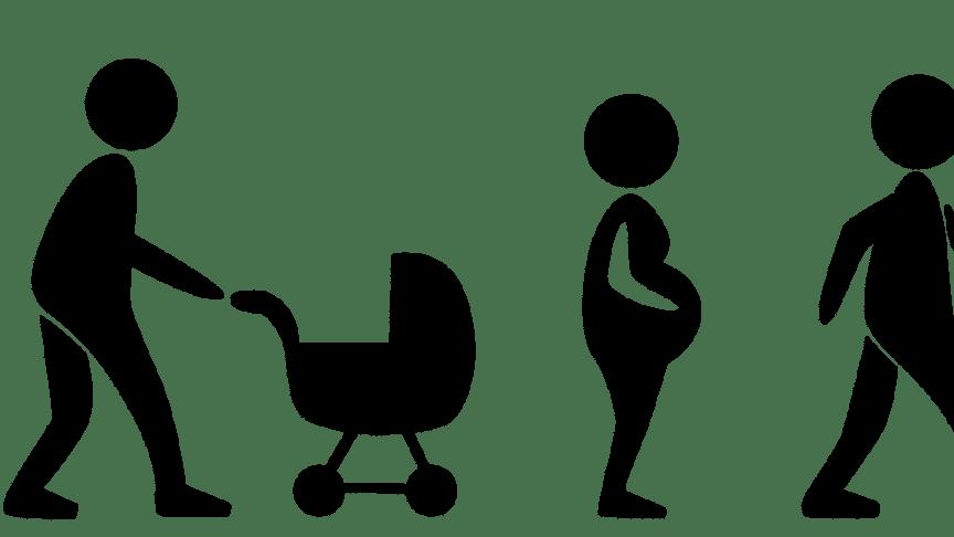 Pressinbjudan: Internationella funktionshinderdagen