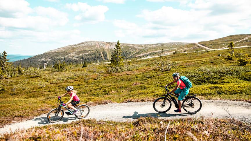 Høyfjellssykling på tilrettelagte sykkelstier er populært. Foto: Andreas Fausko