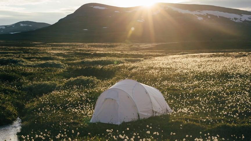 Urbergs nya tält i ZeroColor serien