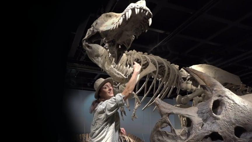 Dino-Doris älskar dinosaurier! Foto: Bengt Olofsson