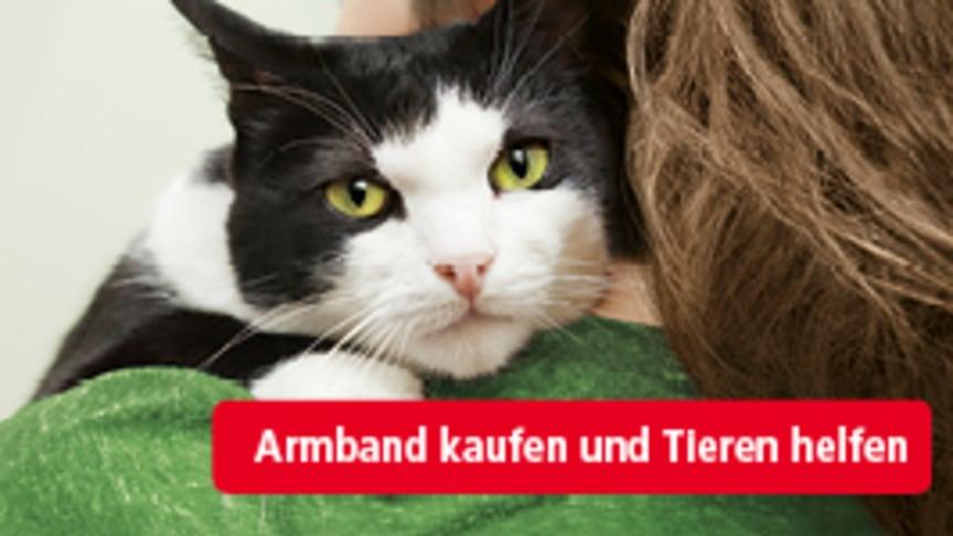 Freundschaft verbindet: Mit modischem Armband zum Botschafter für den Tierschutz werden