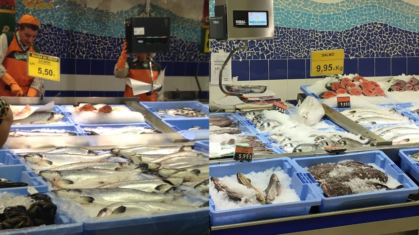 Mercadona supermarkets in Spain has a 37 per cent market share of salmon. The pictures shows that as salmon prices have risen, the salmon share of seafood counters has been reduced. Prices rose from 5,50 Euro in 2014 to 9,95 Euro in 2016.