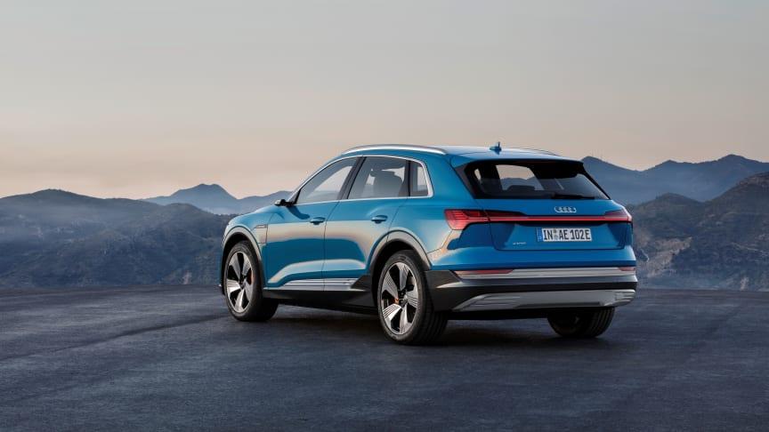 Audi e-tron (Antigua blue) rear, statisk