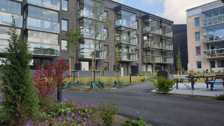 Under 2020 var de 91 lägenheterna i Stenskeppet i Hammar färdiga och de nya hyresgästerna kunde flytta in.