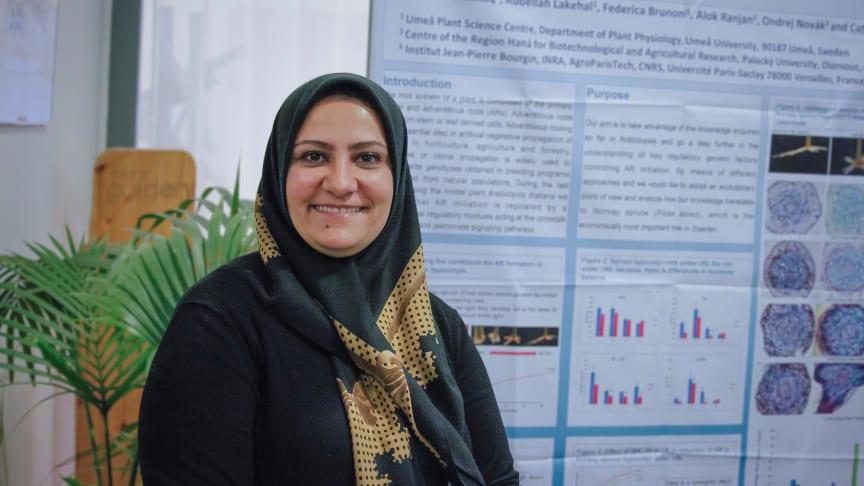 Sanaria Abbas Jaafer Alallaq, doktorand på Umeå Plant Science Centre, Institutionen för fysiologisk botanik vid Umeå universitet. Foto: Eva-Maria Diehl