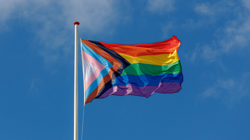 The Progress Pride flag flies on a flagpole in front of a sky background. (Royalty-free stock photo ID 1785493415)