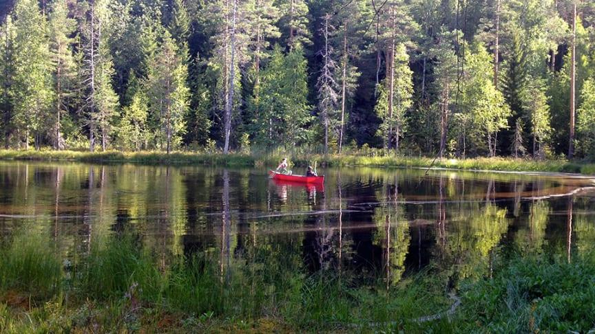 Leyden Fernandez-Vidal och Carla Perez samlar in prover från sjön Alinen Mustajärvi i södra Finland, en av 10 450 miljöer som ingick i studien. Foto: Sari Peura