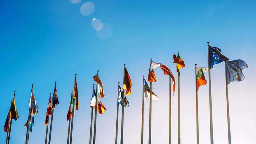 EU-rapport om system för att förhindra farliga produkter
