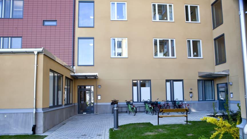 Bild från Landbotorpsallén, Ladugårdsängen i Örebro.