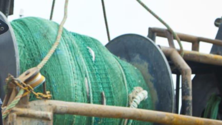 Lyckat fiskestopp i Skagerrak