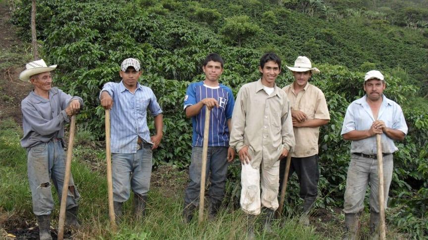 Investerer i bærekraftig jordbruk i Latin-Amerika