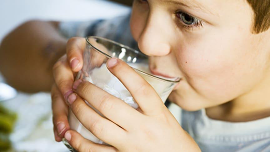 Norrländsk mjölk till offentlig sektor i Norrland