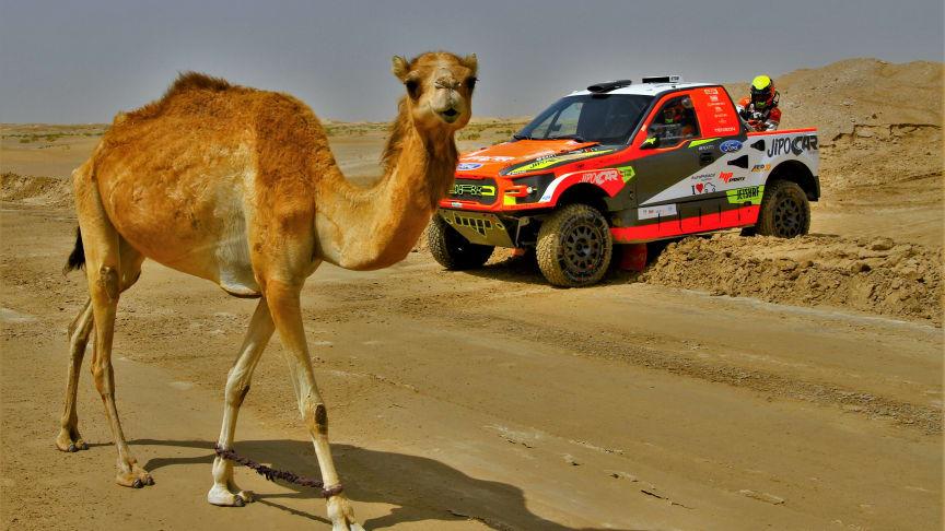 Martin Prokop: Historicky nejúspěšnější Čech na Rally Dakar v kategorii osobních vozů