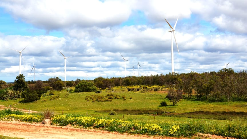 Cooperation between IEA and IRENA on renewable energy in South Africa