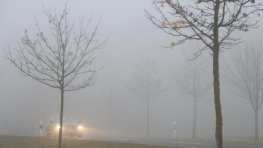 Die Benutzung von Nebelscheinwerfern ist reglementiert. Foto: ARCD