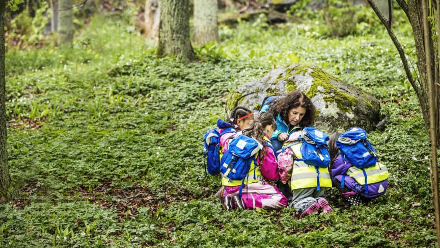 Skogshjältarna. Foto: Daniel Ohlsson
