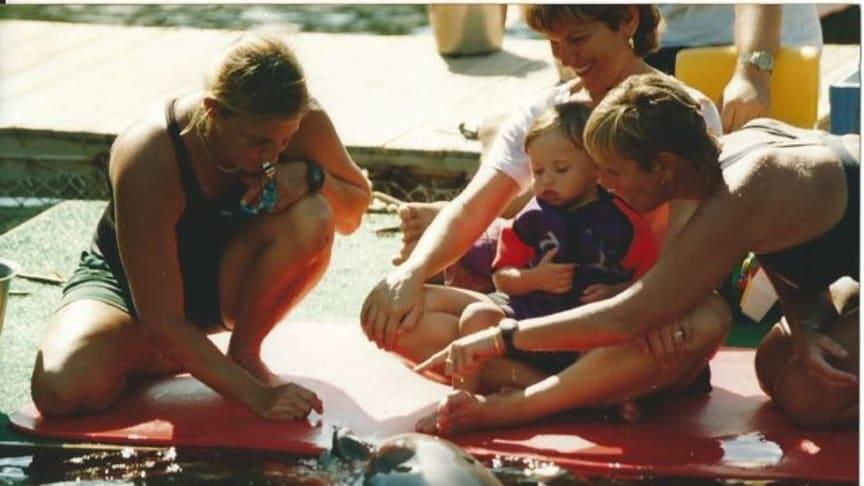 """Delfintherapie mit """"dolphin aid"""" (WDSF Foto - frei verfügbar)"""