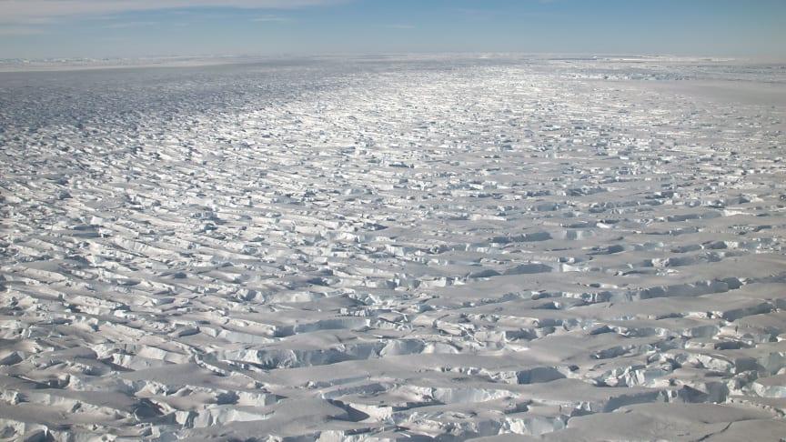 Reconnaissance flight over the Thwaites glacier (U.S. National Science Foundation)