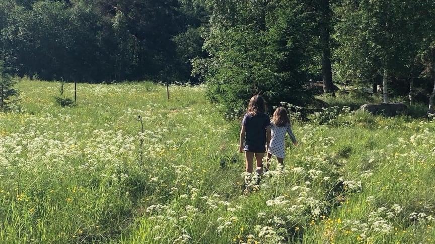 Swedish Silence: Jag lockar med tystnaden, det är en lyxvara för dagens människor