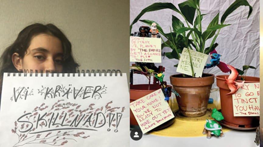 Bilder som laddats upp på Samtidsbild. Foto: Fr. v. Sarah Sulaiman, Tuva Jagell, Elsa Nelander.