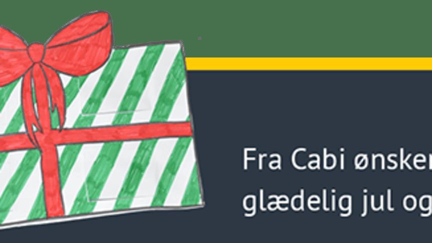 Glædelig jul og et tilbageblik på 2017
