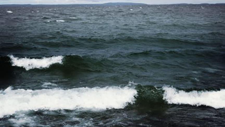 Internationellt HaV-möte i Visby om havsplanering i Östersjön