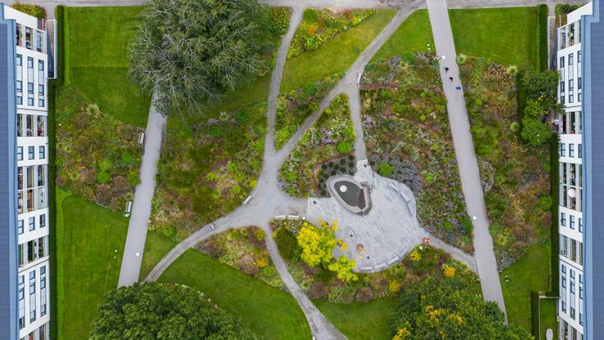 Drönarbild från Perennparken i Skärholmen. Fotograf: Peter Lydén.