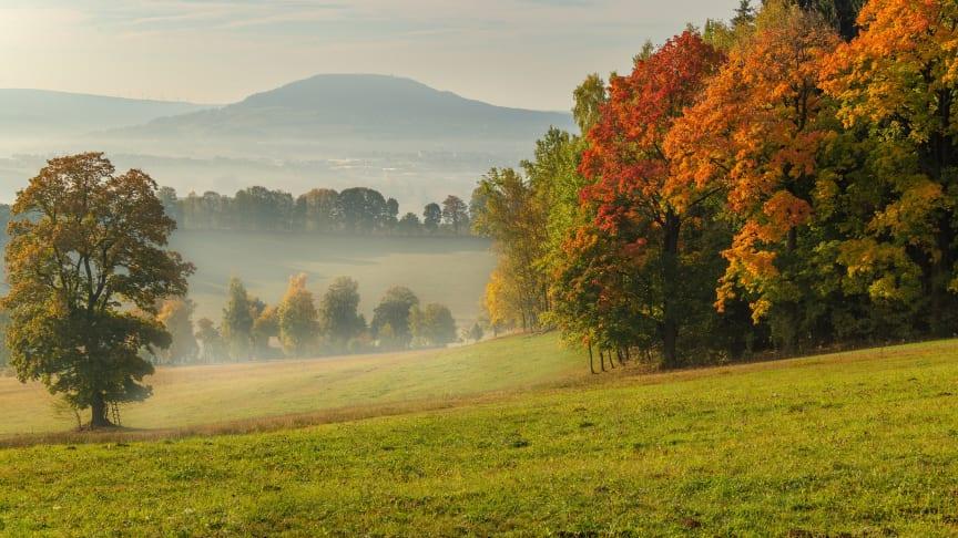 Herbststimmung im Erzgebirge