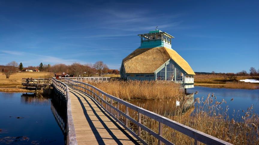 Naturum Hornborgasjön. Foto: Jonas Ingman