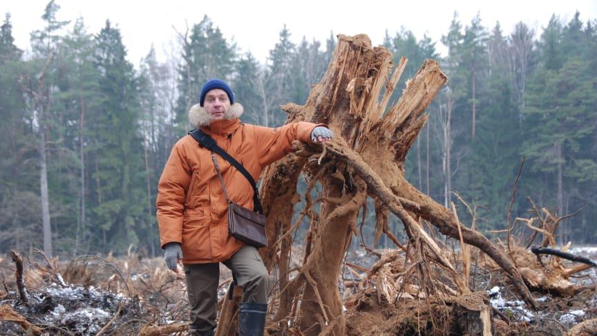 Tips på skogsbränsleseminarier!