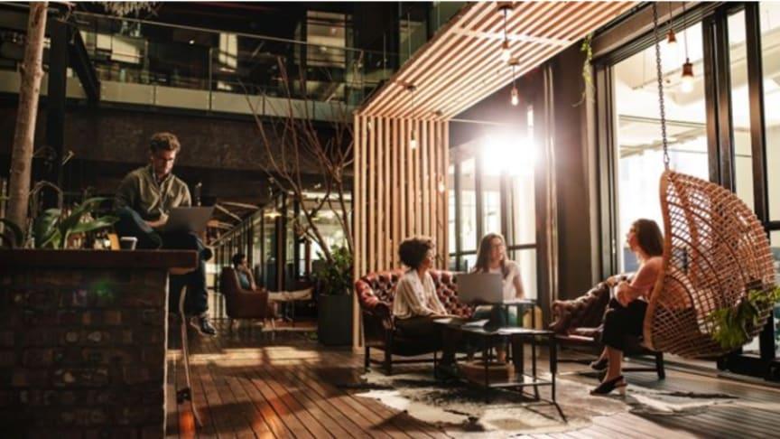 Vinnarbyggnaden Workery+ Vallila i Helsingfors erbjuder ergonomiska arbetsstationer, gym, café, restaurang och en professionell webcaststudio. Byggnaden är utrustad med cybersäkerhet i världsklass och AI garanterar optimala inomhusförhållanden.